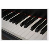 Preços de Aula para iniciantes de teclado no Jardim Sílvia